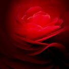 BURNING ROSE by RoseMarie747
