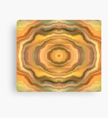 Cosmic Tunnel Canvas Print