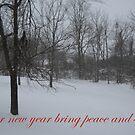 Peace and Serenity by debbiedoda