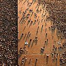 Crowd by Irina Chuckowree
