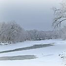 Snow Covered River by Linda Miller Gesualdo
