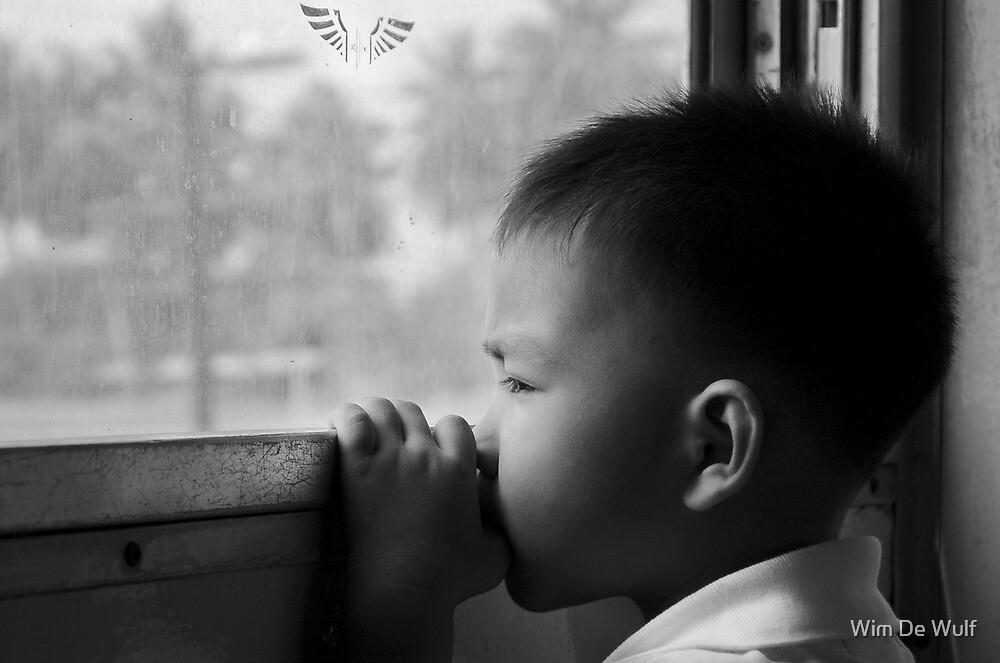 Gazing through the window by Wim De Wulf