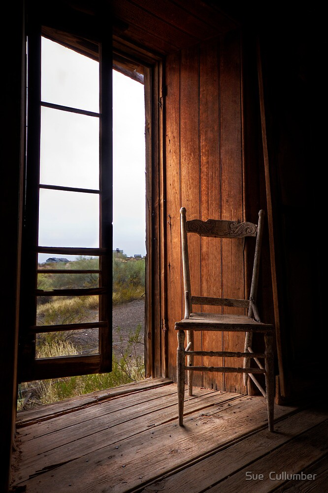Window Light by Sue  Cullumber