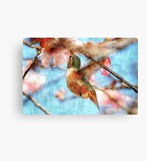 Humming on Texture Canvas Print