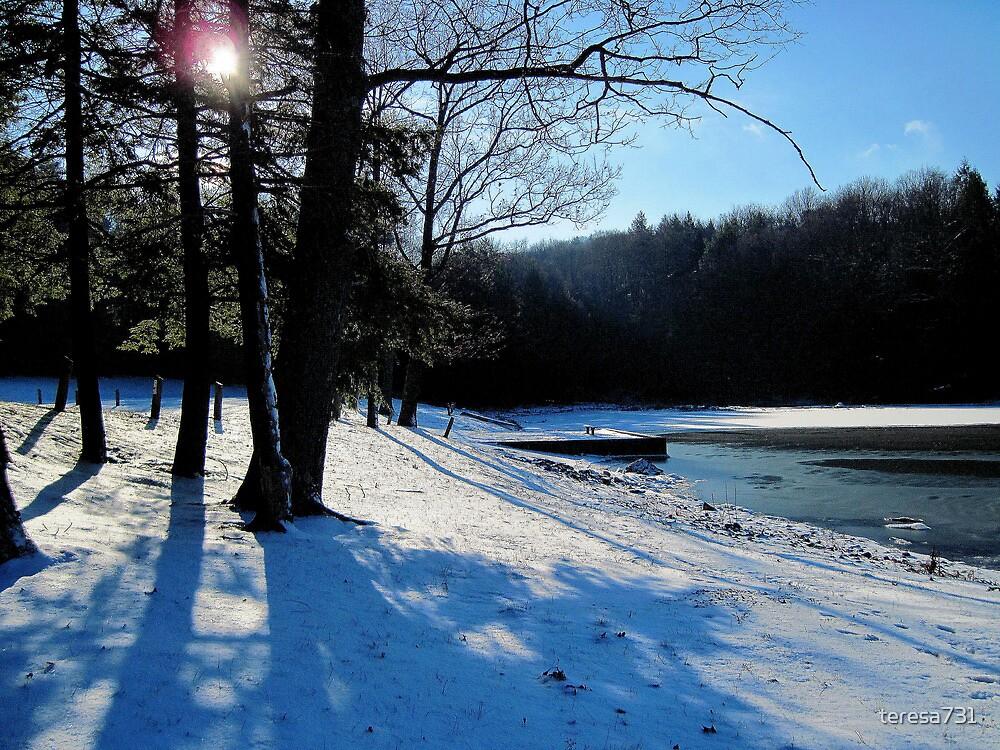 Winter Morning at Cloe Lake by teresa731