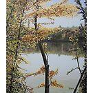 Crawford Lake - Autumn (c) Ian Ridpath 2010 by IanRidpath