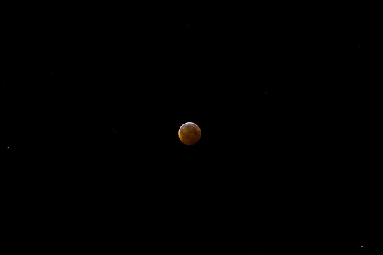 Lunar Eclipse 1 by Forrest  Ray