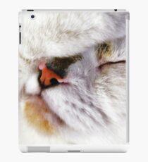 Fur Ball iPad Case/Skin