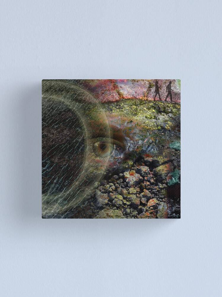 Alternate view of Eye of Content Canvas Print