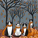 An Autumn Day With Tuxedos by Ryan Conners
