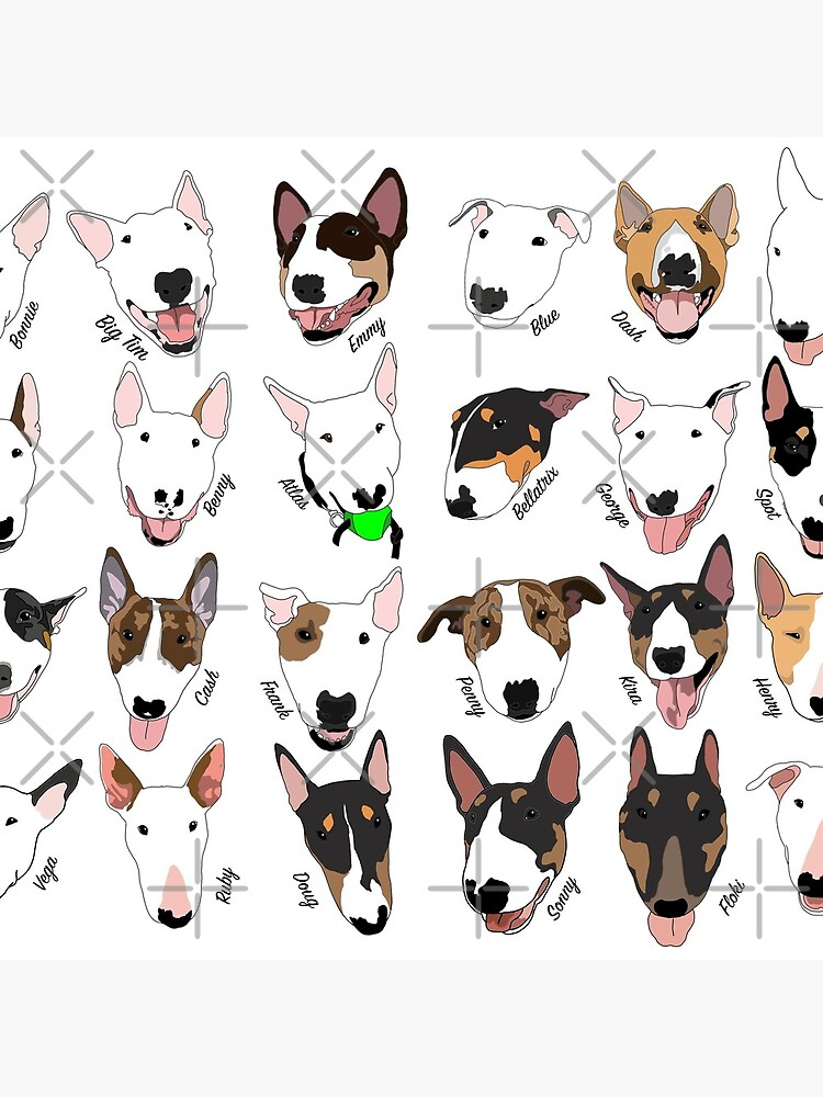 Glasgow Bull Terrier Club by emilydevineart