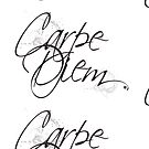 « Carpe Diem » par Chrystelle Hubert