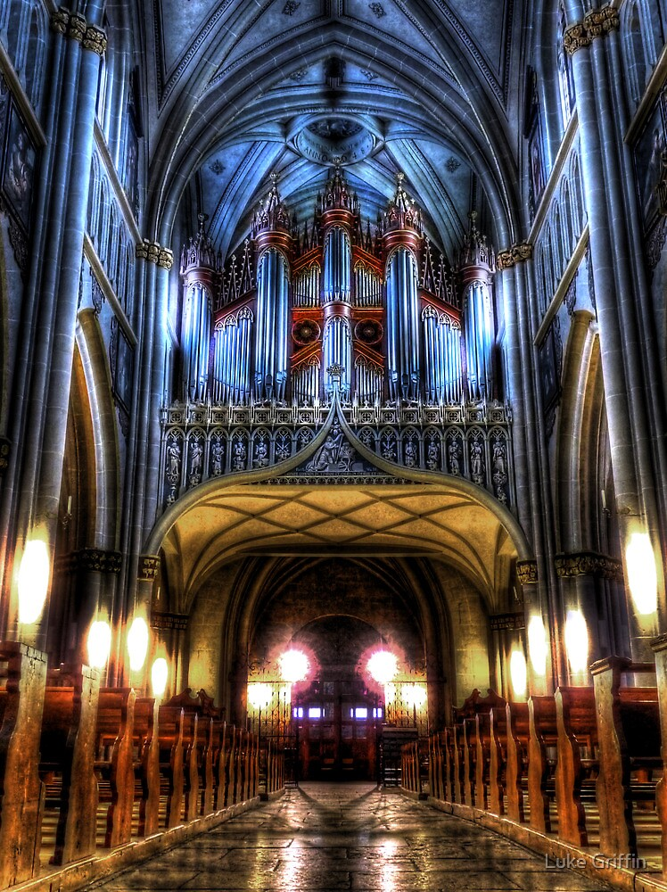 Pipe Organ - St Nicholas Cathedral by Luke Griffin