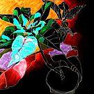 Dark Poinsettia by Tamsin Haggis