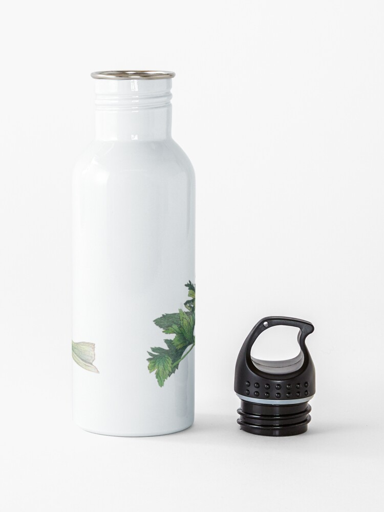 Alternate view of bloody mary recipe Water Bottle
