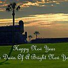 Dawn Of A New Year by BobJohnson