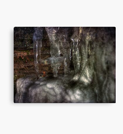 The Ice Shelf Canvas Print