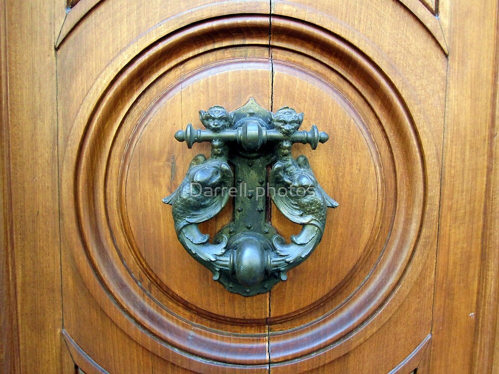 Doors of Europe-Florence 1 by Darrell-photos