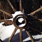 Wagon Wheel by Julie Moore