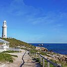 Spring morning at Rottnest by Susan Moss