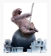 Wrecking Ball Sloth Photographic Print