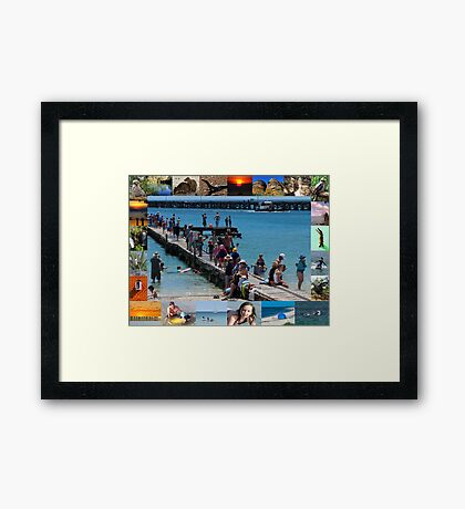 Australia Day Framed Print