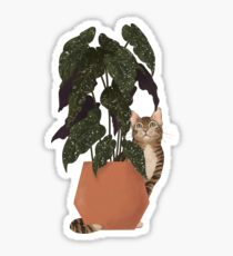 tiger at heart Glossy Sticker