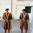 Vatican Guards by Darrell-photos