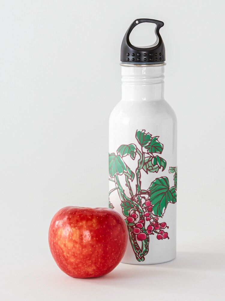 Alternate view of Currant Water Bottle