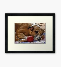 The Princess and her ball Framed Print