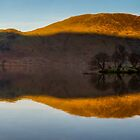 Crummock reflection, Lake District, United Kingdom by Cliff Williams