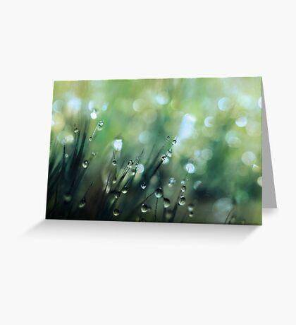 Moss Drops Greeting Card