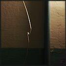 loose wire by Nikolay Semyonov