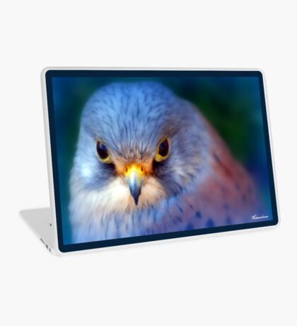 Little Boy Blue.... Laptop Skin
