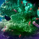 Mysterious And Beautiful Underwater World Colorfully by hurmerinta