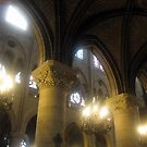 Notre Dame 4 by Darrell-photos