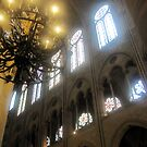 Notre Dame 5 by Darrell-photos