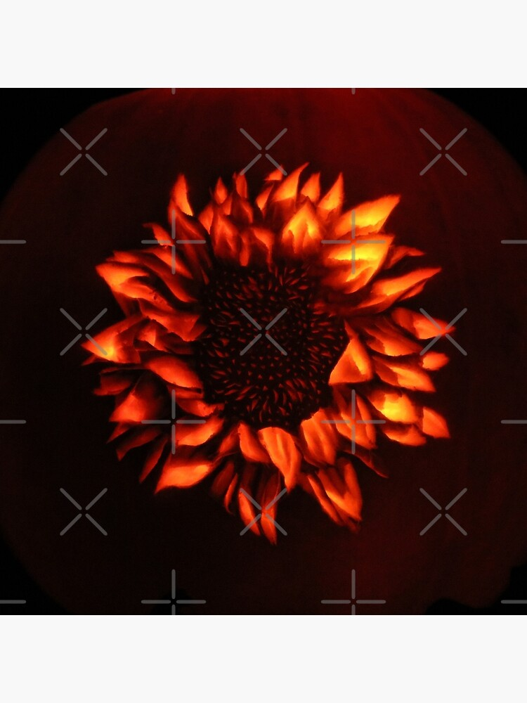 Pumpkin Sunflower by MotiBlack