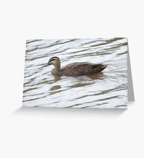 Fishing For A Duck Greeting Card