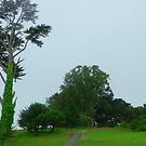 Tree by tabusoro