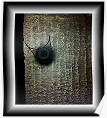 Genie in the lamp, panasonic lumix Poster