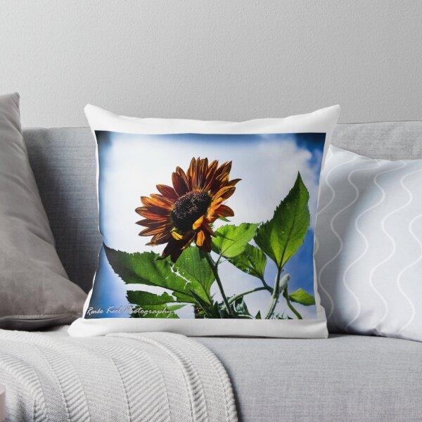 Sunflower in Santa Fe Throw Pillow