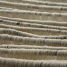 Rice Noodles by misskris