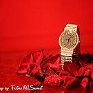wait for time by Fatima ALShamsi