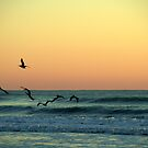 Sunrise at the Beach by Gemma June