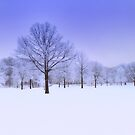 Winter Blues by martinilogic