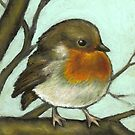 Robin by tanyabond