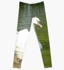 Merch #47 -- Swan - Shot 5 Leggings