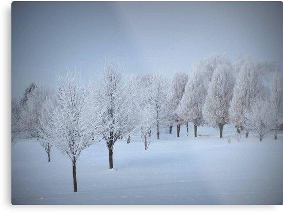 One More Fosted Tree Scene by Linda Miller Gesualdo