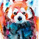 Red panda  by Slaveika Aladjova
